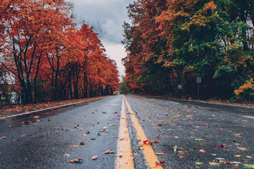 Be Ready For Autumn Driving Challenges in the Great Lakes Bay Region